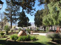 Museo Pío Pablo Díaz, Cachi - Salta Golf Courses, Wanderlust, Plants, Salta, Museums, Plant, Planets