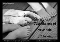 """I am more than """"just your dog"""". I am part of your family. And just like your kids, ...I belong! Forever! ♥"""