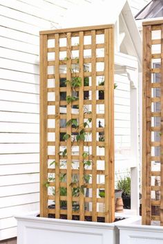 Learn how to make this gorgeous trellis planter for your garden or patio! Perfect for adding a little privacy and a great project for beginners!