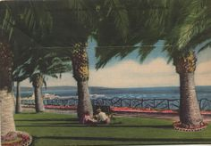 1930's Santa Monica postcard holder. Hagins collection.