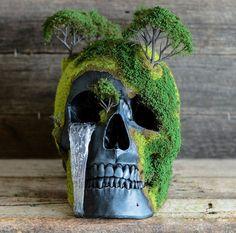 Memento Mori – Bonsai and human skull sculptures to celebrate life and death (image) Memento Mori Art, Real Human Skull, Mini Bonsai, Creation Deco, Bonsai Garden, Bonsai Forest, Bonsai Trees, Skull And Bones, Skeleton Bones