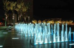 curtis hixon park tampa - Google Search
