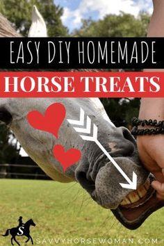 Homemade Horse Treats Printable Recipe - Easy DIY Horse Treats by Savvy Horsewoman Homemade Horse Treats, Homemade Dog, Horse Care Tips, My Horse, Horse Feed, Horse Camp, Horse Training, Training Tips, Pet Treats