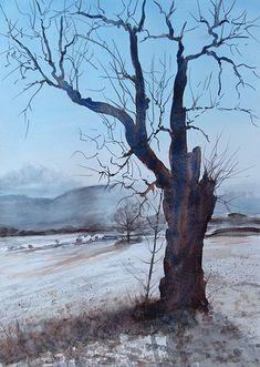 Snow, Watercolors, Plants, Outdoor, Art, Outdoors, Water Colors, Watercolor Paintings, Plant