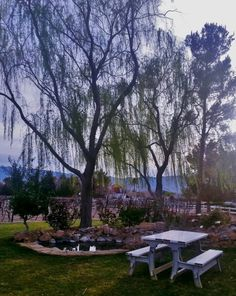 See 82 photos and 20 tips from 793 visitors to Pahrump Valley Winery. Peaceful Places, Cottages, Rv, Scenery, Restaurant, Wine, Photos, Cabins, Motorhome