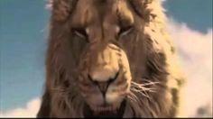 King Aslan of Narnia by PT