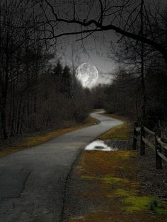 The moon at the end of the lane.