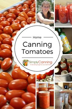Canning Tomatoes safely is something we are passionate about. Learn the USDA safety standards and get ideas and recipes for tomato sauce plus more at #SimplyCanning