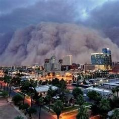 Phoenix Dust Storm - The Haboob - The mile-high dust storm moved between speeds of 50 and 60 mph and appeared to be nearly 100 miles wide, according to the Weather Service's radar. A typical dust storm in Arizona might reach 1,000 feet and travel between 30 and 40 mph.