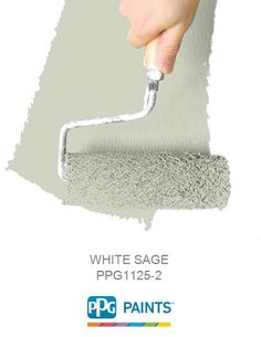 WHITE SAGE is a part of the Greens collection by PPG Paints™. Browse this paint color and more collections for more paint color inspiration.