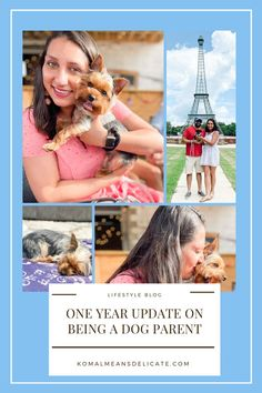Dog Parent, Pawrent, Dog Life, First time dog owners, Yorkshire Terrier, Yorkie #DogParent #Pawrent #DogLife #FirstTimeDogOwners #YorkshireTerrier #Yorkie First Year, First Time, Southern Girl Style, Yorkshire Terrier, Creature Of Habit, Gotcha Day, Getting A Puppy, New York Style, Take A Nap