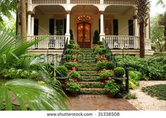 stock photo : Beautiful front stairs and yard of historic colonial home with flowers and ivy