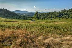 Facebook David Hill, Blue Ridge Parkway, Mountains, Facebook, Nature, Travel, Naturaleza, Viajes, Destinations