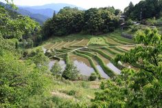 棚田のある風景 : 四季折々~奈良大和路~