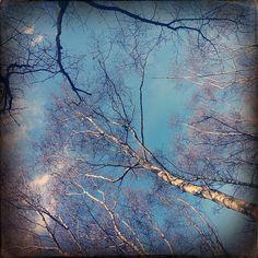 Love the blue! The sky