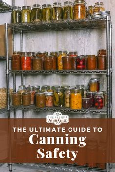 Canning safety is super important. My article discusses botulism worries, dangerous canning methods, and what you can do instead. Canning Soup Recipes, Canning Tips, Home Canning, Canning Pressure Cooker, Pressure Canning Recipes, Pressure Cooking, High Acid Foods, Food Spoilage, Low Acid Recipes