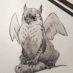 Pygmy griffin. #sketch #sketchbook #pencildrawing #pencil #fantasy #griffin #gryphon #illustration #mause #cute #animals