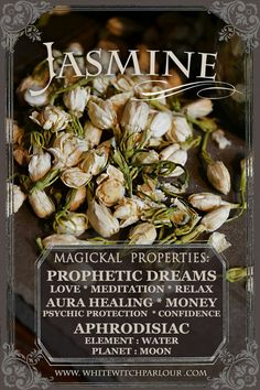 Dried Jasmine Flowers Jasminum Officinale For Love Meditation Relaxation Prophetic Dreams Healing the Aura psychic protection money flow confidence building or as an aphr. Magic Herbs, Herbal Magic, Plant Magic, Herbal Remedies, Natural Remedies, Witch Cottage, Witch Herbs, Herbal Witch, Under Your Spell