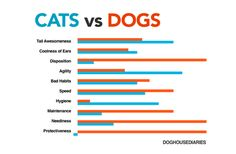 Cats vs Dogs - infographic