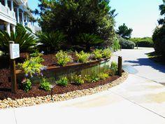 Coastal gardening | Pine Island Residence | Pinterest | Coastal and ...