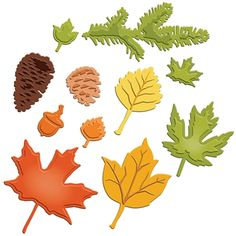 Spellbinders - Shapeabilities Collection - Die Cutting and Embossing Templates - Fall Foliage at Scrapbook.com