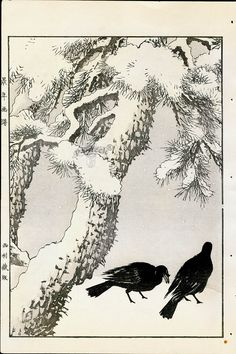 Antique prints of Karasu (Blackbird) - Winter from 1891 Keinen Imao Woodblock 1st Edition Birds & Flowers Japan