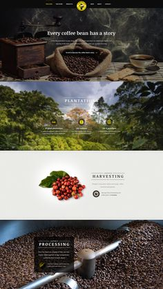 Coffee Brand Parallax Website Concept by Ales Nesetril |