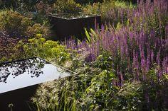 Courtyard garden | Tom Stuart-Smith