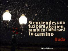 """""""Si enciendes una #Luz para alguien, también iluminará tu #Camino"""". #Buda #Citas #Frases @candidman"""