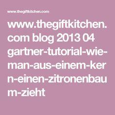 www.thegiftkitchen.com blog 2013 04 gartner-tutorial-wie-man-aus-einem-kern-einen-zitronenbaum-zieht