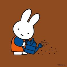 It's time to give your seeds a little drink now, Miffy.