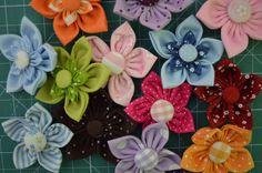 flores no meu jardim... | Flickr - Photo Sharing!