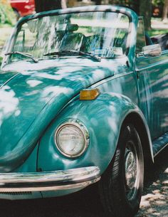 ღღ A bug.. My first car..17 years old, not in this great color and not a convertible. But my beetle never failed me.
