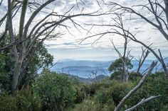 View through the window - Taken from the AAWT in the Victorian High Country Australia [OC][1920x1280] #hiking #camping #outdoors #nature #travel #backpacking #adventure #marmot #outdoor #mountains #photography