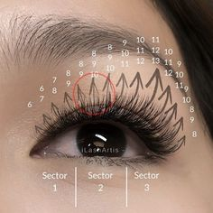 ・・・ Do you want to know how this set of lashes was created❓ Take a closer look at lash map strategy nr. Eyelash Extensions Styles, Volume Lash Extensions, Eyelash Salon, Eyelash Curler, Makeup Brush Storage, Eyelash Sets, Individual Lashes, How To Clean Makeup Brushes, Perfect Eyes