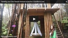 Woman Builds 230SF Cabin in Hawaii in 2 Months for $11k