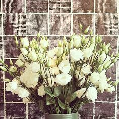 SPRING IS HERE | We're all about white roses to help celebrate the new season.