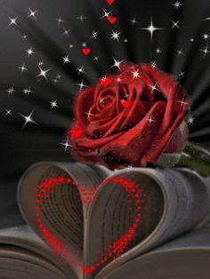 Red-Rose Red_Rose-[KingMasti.Com].gif,KingMasti.Com Animations > Love