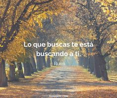 ♥️#frases #citas #vivir #buscar #quotes #life #inspiration #motivation #followme/ From www.facebook.com/gonmaye