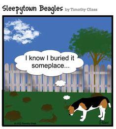sleepytown+beagles | Sleepytown Beagles Cartoons