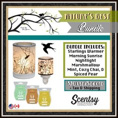 Nature's Best Bundle includes Starlings tabletop warmer, Morning Sunrise nightlight warmer, and 3 Scentsy Bars of your choice for only $70 (plus tax and S&H). Order online at www.mbarquero.scentsy.us
