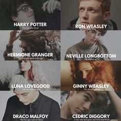 Harry Potter Aesthetic The big 8 Harry Potter, Ron Weasley, Hermione Granger, Neville Longbottom, Luna Lovegood, Ginny Weasley, Draco Malfoy and Cedric Diggory by Camy Malfoy