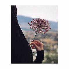Cute Muslim Couples, Muslim Girls, Beautiful Hijab Girl, Moslem Fashion, Hijab Dpz, Hijab Collection, Profile Picture For Girls, Islamic Girl, Beautiful Islamic Quotes