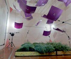 living wall acoustics