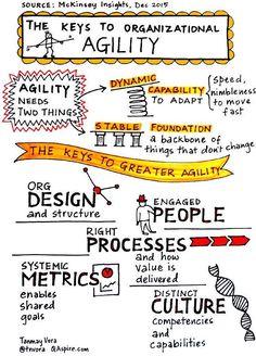 Agile Software Development, Leadership Development, Change Management, Business Management, Organizational Leadership, Organizational Development Consultant, Organizational Design, Leadership Coaching, Leadership Quotes