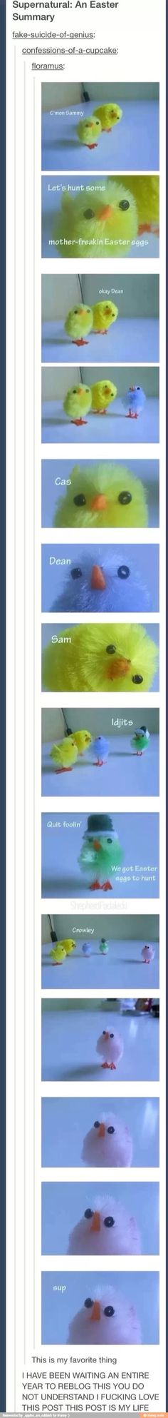 I'M DYING. LITERALLY I WILL DIE WITH TEARS OF LAUGHTER STAHP........ SUPERNATURAL CHICKS
