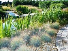 Znalezione obrazy dla zapytania nowoczesny ogród z trawami