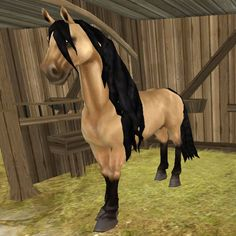 I have this horse and her name is thunder borne