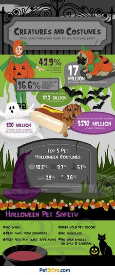 It's Halloween and it's time to add a pet costume to your list of pet supplies. Pet Halloween Costumes, Pet Costumes, Dog Halloween, What Does Halloween Mean, Cat Care Tips, Pet Tips, List Of Animals, Dog Grooming Business, Crazy Dog Lady