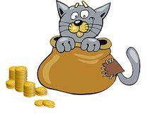 Spreekwoord: een kat in de zak kopen